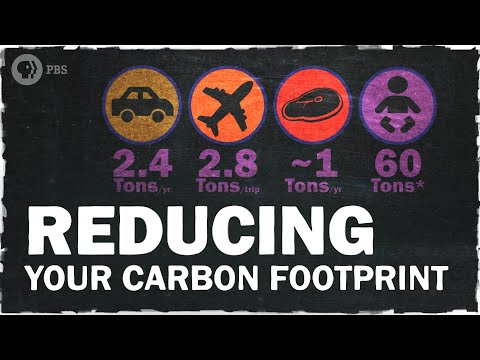 The Best Ways to Reduce Your Carbon Footprint | Hot Mess ��