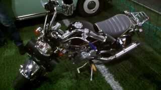 Skyteam Monkeybike 125