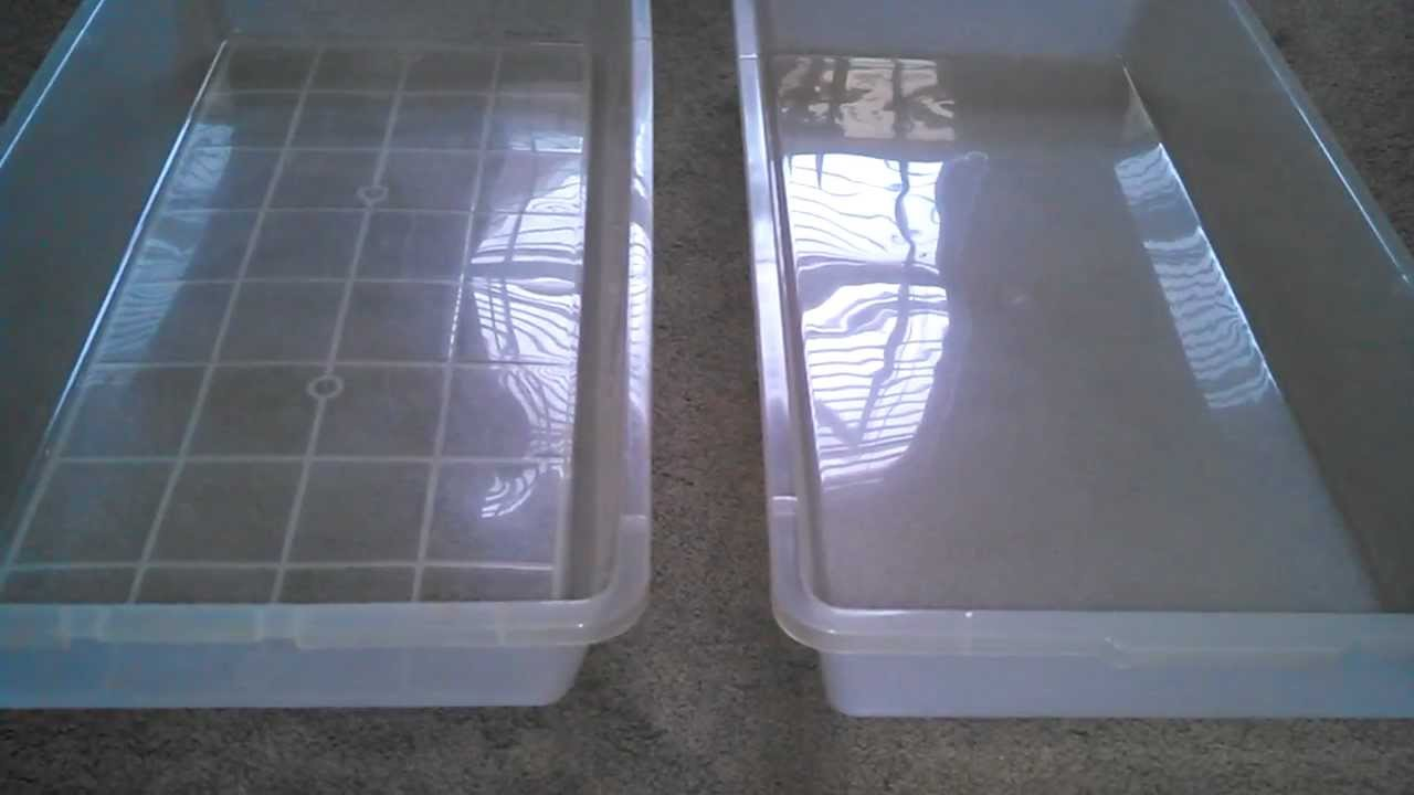 Animal Plastics Rack V 70 And Cb 70 Comparison By 46and2reptiles Any size cage and or rack system you can imagine. animal plastics rack v 70 and cb 70
