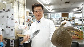 Graphic! How to cook most expensive turtle stew. OVER $300 JAPANESE TRADITIONAL CUISINE.