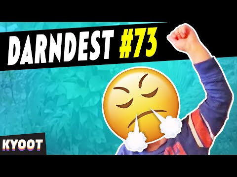 Say The Darndest Things 73 | Funny Videos 2020