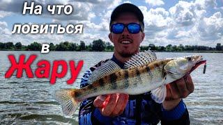 Борьба с огромной рыбой Ловля щуки и судака летом Рыбалка на джиг Azura Kenshin 81 ML