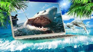 Словили Акулу! Рыбалка В Океане. 1000 Морских Миль За Месяц И Мы Добрались До Флориды, Сша