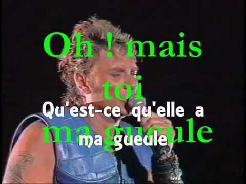 Johnny Hallyday Ma Gueule ( Concert Au Parc Des Princes 1993 )