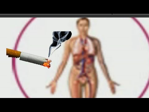 The Effect Of Smoking On Menopause