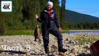 Путешествие о котором мечтает каждый рыбак(ч.5) | Ловим рекордного хариуса | Топим баню, коптим рыбу