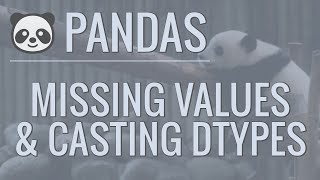 Python Pandas Tutorial (Part 9): Cleaning Data - Casting Datatypes and Handling Missing Values