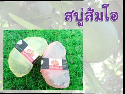 ส้มโอ rutaceae