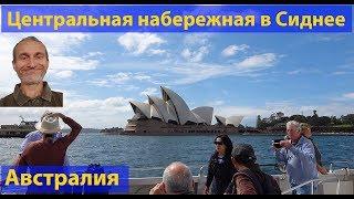 Центральная набережная Сиднея. видео 179