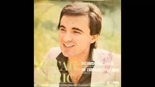 Mitar Miric - Ne zaboravi ovaj grad - (Audio 1978) HD