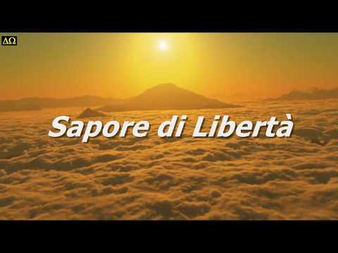 A TASTE OF FREEDOM _ Antti Martikainen _ [Epic Music Video]