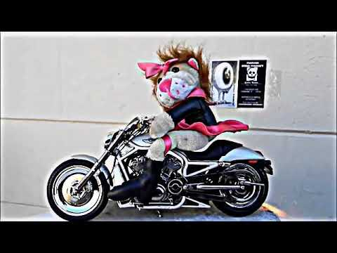Exclusively women riding motorcycles in a mini skirt