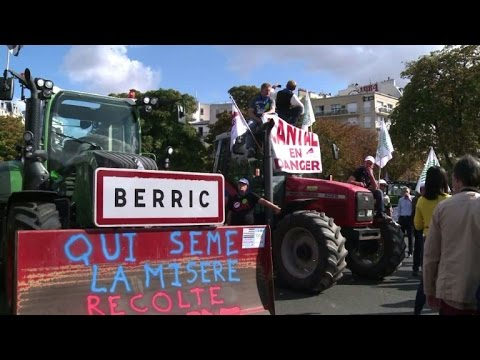 Mass tractor protest in Paris over falling food prices