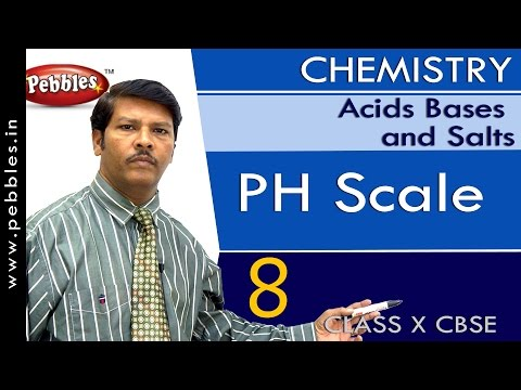 PH Scale | Acids Bases and Salts | Chemistry | CBSE Class 10 Science