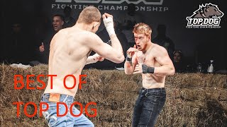 BEST OF TOP DOG FC EP 6