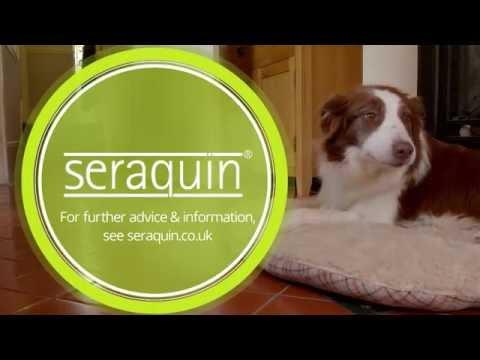 Seraquin TV advert