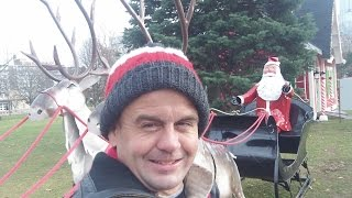 Christmas Lights at Victoria Park London Ontario