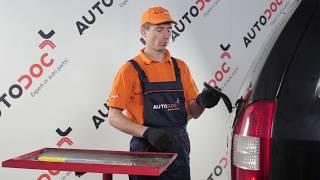 Underhåll Opel Zafira f75 - videoinstruktioner