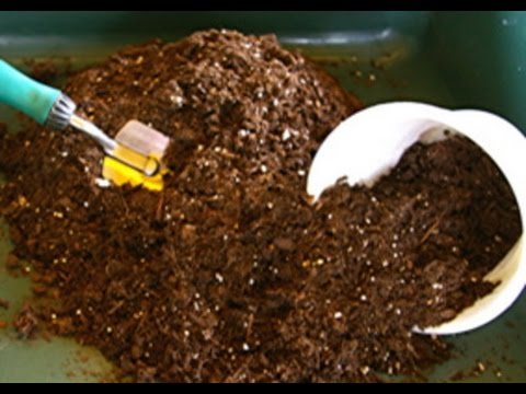 How To Revitalize And Re-use Potting Soil