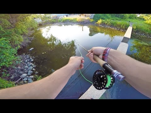 The Best Way To Find NEW Fishing Spots And Catch Fish!