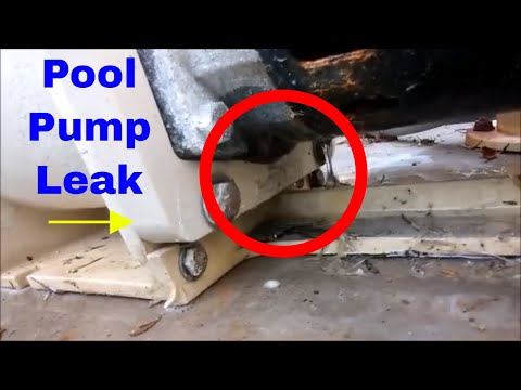 Pool Pump leak out of the bottom and fix. Please Subscribe.