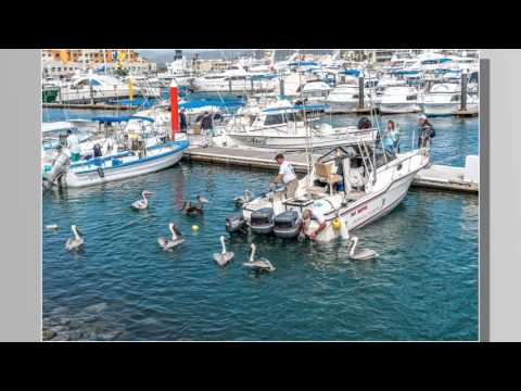 Cabo San Lucas Christmas 2015 in HD 1080