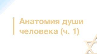 10. Матрица души   Секлитова и Стрельникова   18+