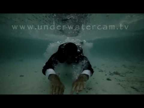 Endless - An ode to the Oceans- music video