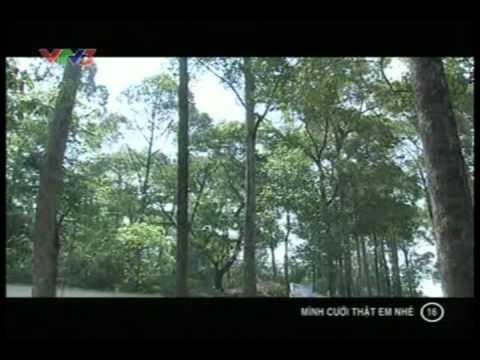 Phim Việt Nam - Mình cưới thật em nhé - Tập 16 - Minh cuoi that em nhe - Phim Viet nam