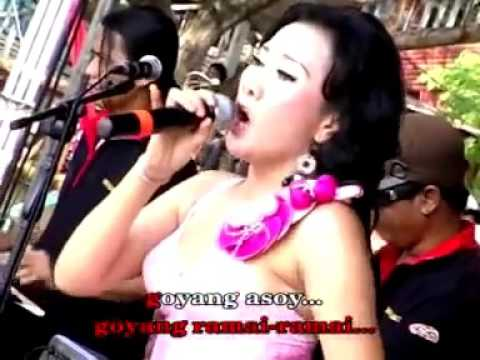 GOYANG ASSOY -Titta Rizky