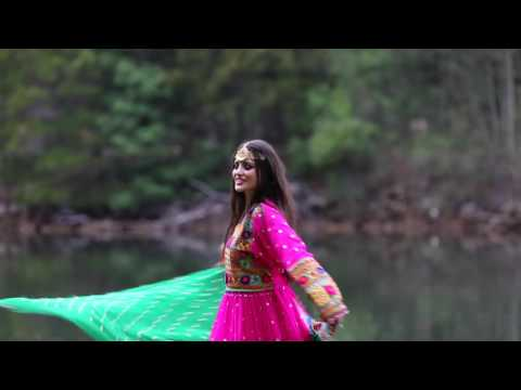 Salim Saifi New Music Video Trailer  DIL...
