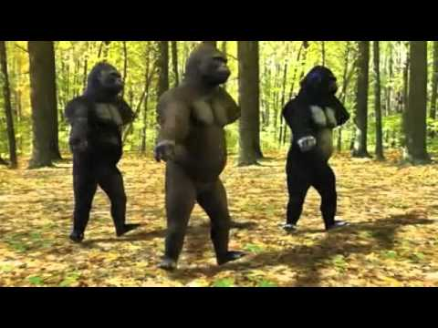 Marky Mark and the Funky BunchGood Vibrations Dancing Gorillas
