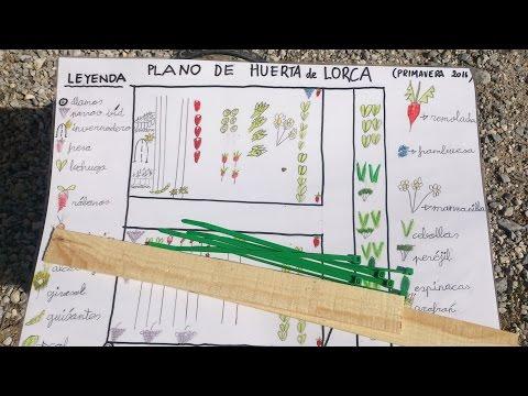 La huerta de Lorca.