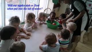 Blossom Burj Babies - Apple Experiment