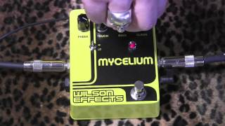 Wilson Effects MYCELIUM Ring Modulator pedal with Kingbee Tele & Mojotone Plexi