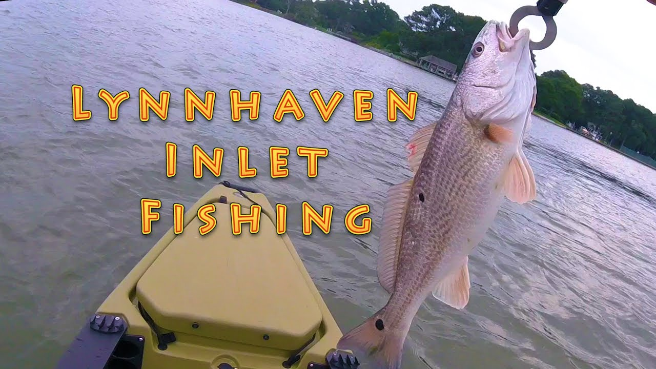 Fishing at lynnhaven inlet may 2017 youtube for Lynnhaven inlet fishing report