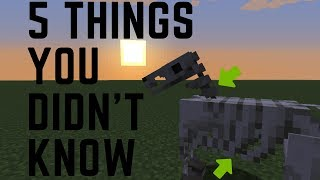 5 THING YOU DIDN'T KΝOW ABOUT SKELETON HORSES
