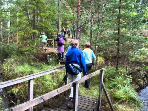 dalsland pilgrimstrail