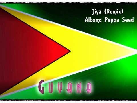 Jiya (I Want To Love You) - Remix *Peppa Seed*