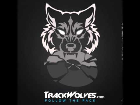 paul van dyk trance. Слушать Paul van Dyk - A State of Trance 600 - UMF in Miami, Florida (24.03.2013) в mp3