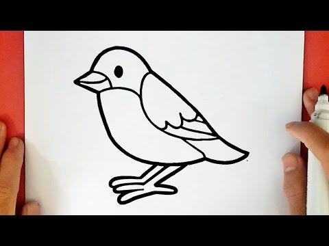 Come Disegnare Un Uccellino Youtube