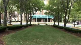 Winexburg Manor Apartments - Silver Spring for Rent