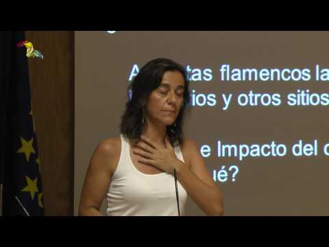 Lucía Sell: 'El flamenco anticapitalista de Flo6x8'