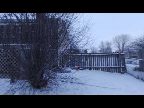 Drone View Of Snow In Liverpool New York