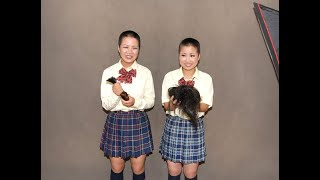 丸刈り女子高生 ☆High school girls haircut long to bald