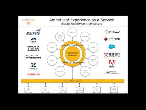 AmberLeaf's Data Integrator in the Cloud Solution Offering
