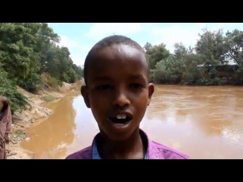webiga shabeelle ee Baladweyne oo buux dhafay by Shabakada wararka  Xornimodoon