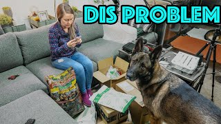 Life with 2 German Shepherds is a Mess!