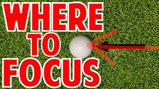 Where Should Your Eyes Focus In The Golf Swing?