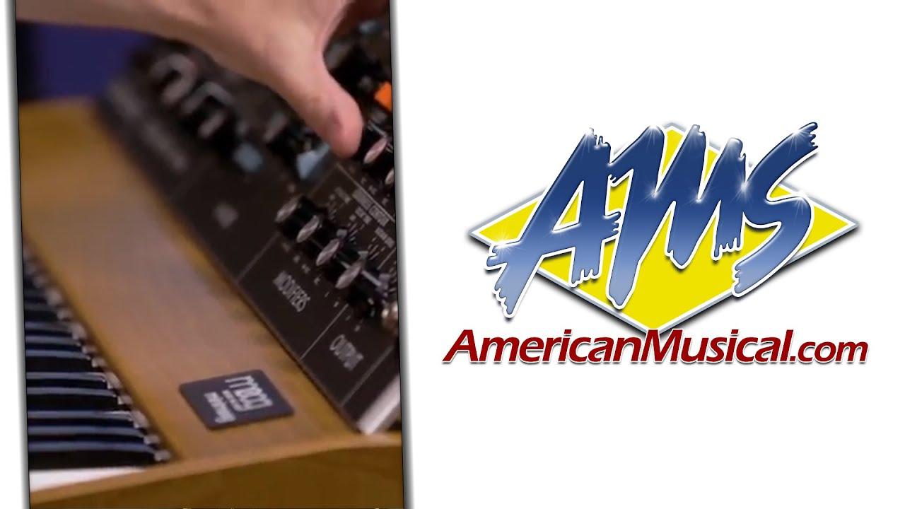 Moog Minimoog Model D Hip Hop Performance - Moog Minimoog Model D Keyboard  Synthesizer